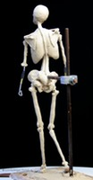 Sculpting basic skeleton © Lori Kiplinger Pandy