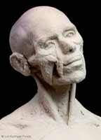 sculpting facial muscles © Lori Kiplinger Pandy